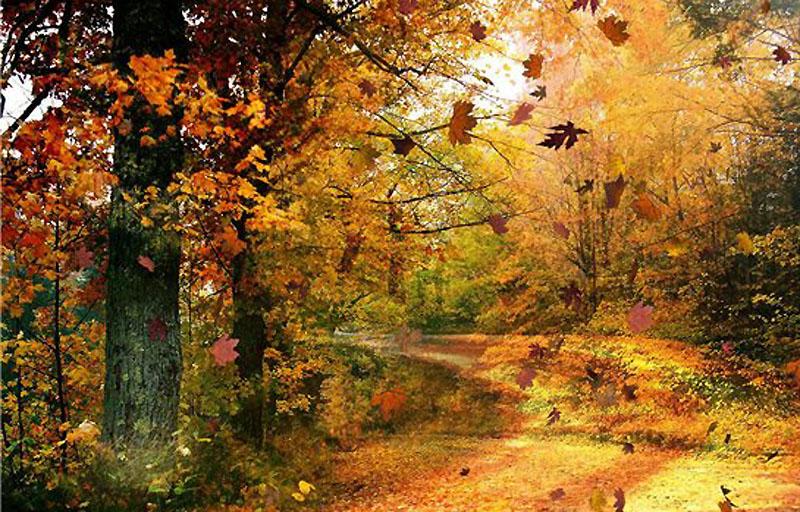 Анализ стихотворения Н. М. Карамзина «Осень»