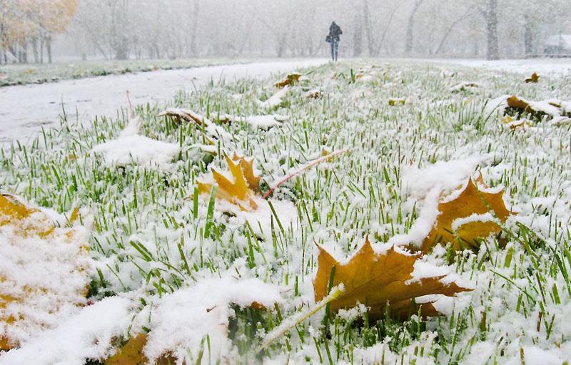 Первый снег. Сочинение