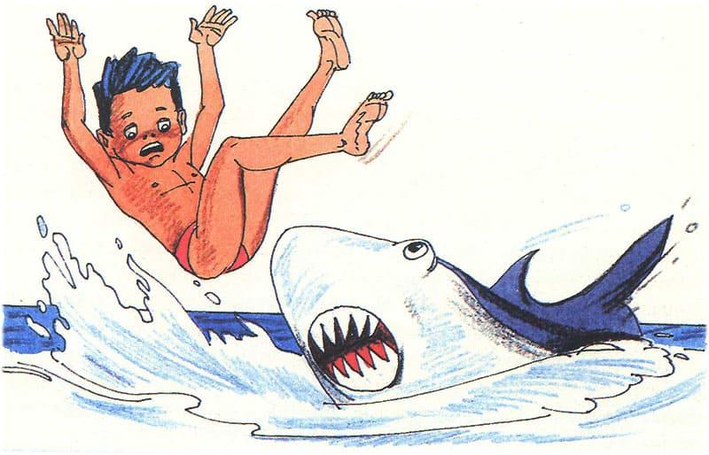На Томми нападает акула