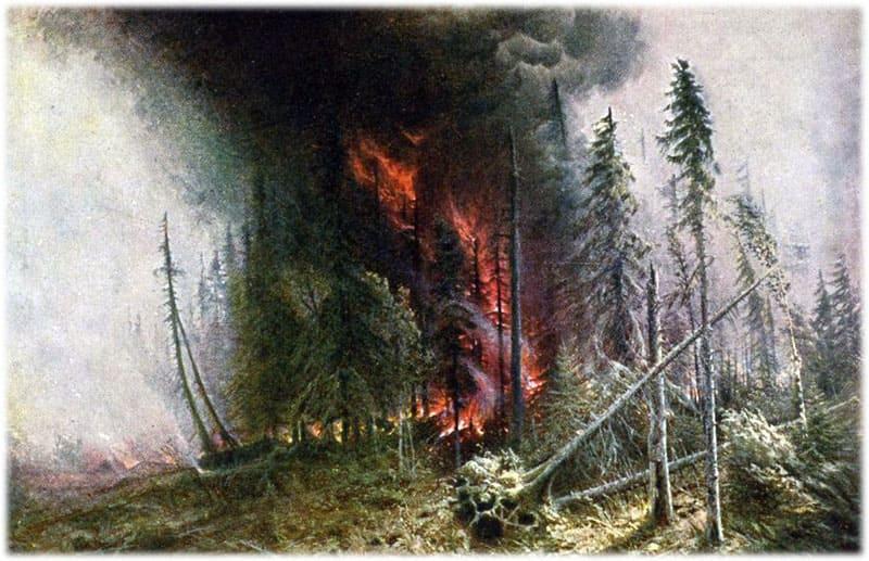 Лесной пожар Денисов-Уральский