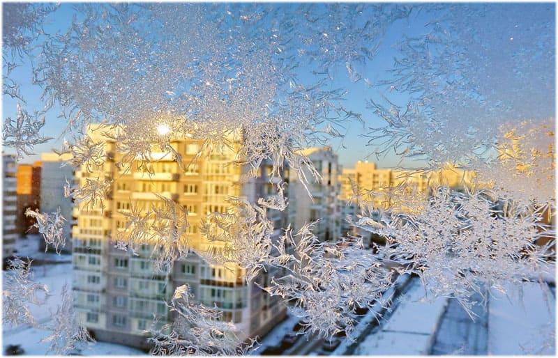 Мороз и солнце сочинение