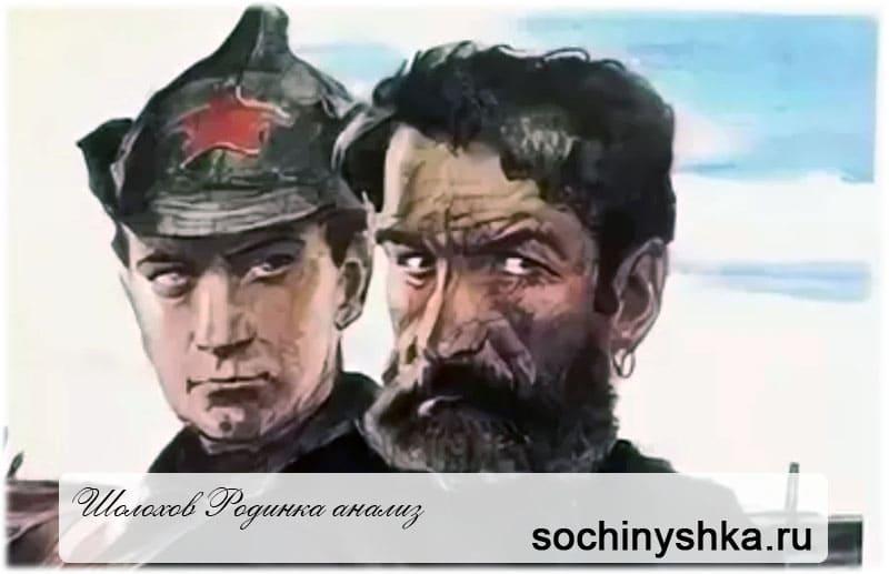 Анализ рассказа Родинка Шолохова